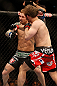 LAS VEGAS, NV - DECEMBER 29:  Brad Pickett (red shorts) punches Eddie Wineland during their bantamweight fight at UFC 155 on December 29, 2012 at MGM Grand Garden Arena in Las Vegas, Nevada. (Photo by Josh Hedges/Zuffa LLC/Zuffa LLC via Getty Images) *** Local Caption *** Brad Pickett; Eddie Wineland