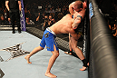 LAS VEGAS, NV - DECEMBER 29:  (R-L) Alan Belcher attempts to submit Yushin Okami during their middleweight fight at UFC 155 on December 29, 2012 at MGM Grand Garden Arena in Las Vegas, Nevada. (Photo by Josh Hedges/Zuffa LLC/Zuffa LLC via Getty Images) *** Local Caption *** Yushin Okami; Alan Belcher