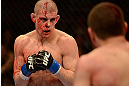 LAS VEGAS, NV - DECEMBER 29:  (L-R) Joe Lauzon and Jim Miller face off during their lightweight fight at UFC 155 on December 29, 2012 at MGM Grand Garden Arena in Las Vegas, Nevada. (Photo by Donald Miralle/Zuffa LLC/Zuffa LLC via Getty Images) *** Local Caption *** Joe Lauzon; Jim Miller