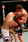 LAS VEGAS, NV - DECEMBER 29:  (R-L) Jim Miller knees Joe Lauzon during their lightweight fight at UFC 155 on December 29, 2012 at MGM Grand Garden Arena in Las Vegas, Nevada. (Photo by Josh Hedges/Zuffa LLC/Zuffa LLC via Getty Images) *** Local Caption *** Joe Lauzon; Jim Miller