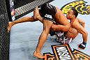 CHICAGO, IL - JANUARY 26:  Demetrious Johnson (L) dumps John Dodson (R) during thier Flyweight Championship Bout part of UFC on FOX at United Center on January 26, 2013 in Chicago, Illinois.  (Photo by Al Bello/Zuffa LLC/Zuffa LLC Via Getty Images)