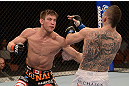 ANAHEIM, CA - FEBRUARY 23:  (L-R) Sam Stout punches Caros Fodor in their lightweight bout during UFC 157 at Honda Center on February 23, 2013 in Anaheim, California.  (Photo by Donald Miralle/Zuffa LLC/Zuffa LLC via Getty Images) *** Local Caption *** Sam Stout; Caros Fodor