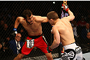 MONTREAL, QC - MARCH 16: (R-L) Rick Story fights Quinn Mulhern in their welterweight bout during the UFC 158 event at Bell Centre on March 16, 2013 in Montreal, Quebec, Canada.  (Photo by Jonathan Ferrey/Zuffa LLC/Zuffa LLC via Getty Images)