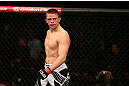 MONTREAL, QC - MARCH 16: Rick Story looks across the octagon at Quinn Mulhern in their welterweight bout during the UFC 158 event at Bell Centre on March 16, 2013 in Montreal, Quebec, Canada.  (Photo by Jonathan Ferrey/Zuffa LLC/Zuffa LLC via Getty Images)