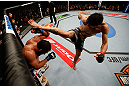 MONTREAL, QC - MARCH 16:  (R-L) Carlos Condit kicks Johny Hendricks in their welterweight bout during the UFC 158 event at Bell Centre on March 16, 2013 in Montreal, Quebec, Canada.  (Photo by Josh Hedges/Zuffa LLC/Zuffa LLC via Getty Images)