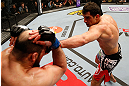 STOCKHOLM, SWEDEN - APRIL 06:  (R-L) Gegard Mousasi punches Ilir Latifi in their light heavyweight fight at the Ericsson Globe Arena on April 6, 2013 in Stockholm, Sweden.  (Photo by Josh Hedges/Zuffa LLC/Zuffa LLC via Getty Images)