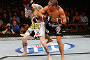 LAS VEGAS, NV - APRIL 13:   (R-L) Urijah Faber elbows Scott Jorgensen in their bantamweight fight at the Mandalay Bay Events Center  on April 13, 2013 in Las Vegas, Nevada.  (Photo by Josh Hedges/Zuffa LLC/Zuffa LLC via Getty Images)  *** Local Caption *** Urijah Faber; Scott Jorgensen