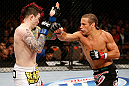 LAS VEGAS, NV - APRIL 13:   (R-L) Urijah Faber punches Scott Jorgensen in their bantamweight fight at the Mandalay Bay Events Center  on April 13, 2013 in Las Vegas, Nevada.  (Photo by Josh Hedges/Zuffa LLC/Zuffa LLC via Getty Images)  *** Local Caption *** Urijah Faber; Scott Jorgensen