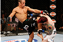 LAS VEGAS, NV - APRIL 13:   (L-R) Urijah Faber knees Scott Jorgensen in their bantamweight fight at the Mandalay Bay Events Center  on April 13, 2013 in Las Vegas, Nevada.  (Photo by Josh Hedges/Zuffa LLC/Zuffa LLC via Getty Images)  *** Local Caption *** Urijah Faber; Scott Jorgensen