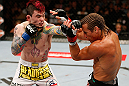 LAS VEGAS, NV - APRIL 13:   (L-R) Scott Jorgensen punches Urijah Faber in their bantamweight fight at the Mandalay Bay Events Center  on April 13, 2013 in Las Vegas, Nevada.  (Photo by Josh Hedges/Zuffa LLC/Zuffa LLC via Getty Images)  *** Local Caption *** Urijah Faber; Scott Jorgensen