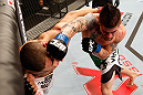 JARAGUA DO SUL, BRAZIL - MAY 18: (R-L) Jeremy Larsen punches Lucas Martins in their lightweight bout during the UFC on FX event on May 18, 2013 at Arena Jaragua in Jaragua do Sul, Santa Catarina, Brazil. (Photo by Josh Hedges/Zuffa LLC/Zuffa LLC via Getty Images)