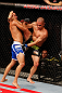 JARAGUA DO SUL, BRAZIL - MAY 18:   (L-R) Jussier Formiga attempts to take down Chris Cariaso in their flyweight bout during the UFC on FX event on May 18, 2013 at Arena Jaragua in Jaragua do Sul, Santa Catarina, Brazil.  (Photo by Josh Hedges/Zuffa LLC/Zuffa LLC via Getty Images)
