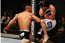 JARAGUA DO SUL, BRAZIL - MAY 18:   (L-R) John Lineker punches Azamat Gashimov in their flyweight bout during the UFC on FX event on May 18, 2013 at Arena Jaragua in Jaragua do Sul, Santa Catarina, Brazil.  (Photo by Josh Hedges/Zuffa LLC/Zuffa LLC via Getty Images)