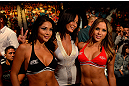 LAS VEGAS, NV - MAY 25:   (L-R) Arianny Celeste, Kenda Perez and Brittney Palmer in attendance during UFC 160 at the MGM Grand Garden Arena on May 25, 2013 in Las Vegas, Nevada.  (Photo by Donald Miralle/Zuffa LLC/Zuffa LLC via Getty Images)  *** Local Caption *** Arianny Celeste; Brittney Palmer; Kenda Perez