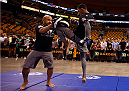 BOSTON, MA - AUGUST 14:  Iuri Alcantara holds an open training session for fans and media inside TD Garden on August 14, 2013 in Boston, Massachusetts. (Photo by Josh Hedges/Zuffa LLC/Zuffa LLC via Getty Images)