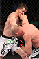 HOUSTON, TEXAS - OCTOBER 19:  (R-L) Tim Boetsch punches CB Dollaway in their UFC middleweight bout at the Toyota Center on October 19, 2013 in Houston, Texas. (Photo by Nick Laham/Zuffa LLC/Zuffa LLC via Getty Images)