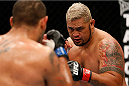 BRISBANE, AUSTRALIA - DECEMBER 07:  (R-L) Mark Hunt squares off with Antonio