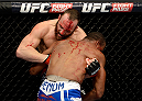 DULUTH, GA - JANUARY 15: (L-R) A bloodied Trevor Smith battles Brian Houston in their middleweight fight during the UFC Fight Night event inside The Arena at Gwinnett Center on January 15, 2014 in Duluth, Georgia. (Photo by Jeff Bottari/Zuffa LLC/Zuffa LLC via Getty Images)