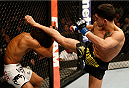 Alex Caceres vs Sergio Pettis