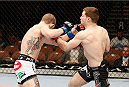 LAS VEGAS, NV - FEBRUARY 22:  (R-L) Zach Makovsky punches Josh Sampo in their flyweight bout during UFC 170 inside the Mandalay Bay Events Center on February 22, 2014 in Las Vegas, Nevada. (Photo by Josh Hedges/Zuffa LLC/Zuffa LLC via Getty Images) *** Local Caption *** Zach Makovsky; Josh Sampo