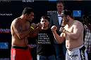 ABU DHABI, UNITED ARAB EMIRATES - APRIL 10:  Antonio Rodrigo Nogueira and Roy Nelson face-off after they weigh-in for UFC Fight Night 39 on April 10, 2014 in Abu Dhabi, United Arab Emirates. UFC Fight Night 39 will take place on April 11 at du Arena featuring  Minotauro Nogueira and Roy