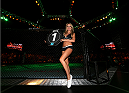ABU DHABI, UNITED ARAB EMIRATES - APRIL 11:  UFC Octagon Girl Carly Baker poses before Clay Guida fights Tatsuya Kawajiri of Japan during UFC Fight Night 39 at du Arena on April 11, 2014 in Abu Dhabi, United Arab Emirates.  (Photo by Warren Little/Zuffa LLC/Zuffa LLC via Getty Images)