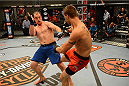 LAS VEGAS, NV - OCTOBER 16:  (R-L) Matt Van Buren kicks Daniel Vizcaya in their elimination fight during filming of season nineteen of The Ultimate Fighter on October 16, 2013 in Las Vegas, Nevada. (Photo by Al Powers/Zuffa LLC/Zuffa LLC via Getty Images) *** Local Caption *** Matt Van Buren; Daniel Vizcaya