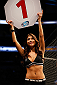 ORLANDO, FL - APRIL 19:  UFC Octagon Girl Arianny Celeste introduces a round during the FOX UFC Saturday event at the Amway Center on April 19, 2014 in Orlando, Florida. (Photo by Josh Hedges/Zuffa LLC/Zuffa LLC via Getty Images)