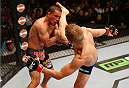 SACRAMENTO, CA - AUGUST 30:  (R-L) T.J. Dillashaw lands a kick to the head of Joe Soto in their UFC bantamweight championship bout during the UFC 177 event at Sleep Train Arena on August 30, 2014 in Sacramento, California.  (Photo by Josh Hedges/Zuffa LLC/Zuffa LLC via Getty Images)