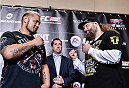TOKYO, JAPAN - SEPTEMBER 17:  Mark Hunt (L) and Roy Nelson square off for the media during the UFC Ultimate Media Day at the Hilton Tokyo on September 17, 2014 in Tokyo, Japan.  (Photo by Keith Tsuji/Zuffa LLC/Zuffa LLC via Getty Images)