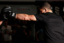 SYDNEY, AUSTRALIA - NOVEMBER 05:  Robert Whittaker of New Zealand holds an open training session for media at the UFC Gym Sydney on November 5, 2014 in Sydney, Australia. (Photo by Josh Hedges/Zuffa LLC/Zuffa LLC via Getty Images)