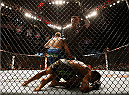 LAS VEGAS, NV - DECEMBER 06:  Urijah Faber (blue shorts) reacts to his victory over Francisco Rivera (bottom) in their bantamweight bout during the UFC 181 event inside the Mandalay Bay Events Center on December 6, 2014 in Las Vegas, Nevada.  (Photo by Josh Hedges/Zuffa LLC/Zuffa LLC via Getty Images)