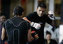 PHOENIX, AZ - DECEMBER 10:  Number 3-ranked UFC lightweight contender Rafael Dos Anjos throws a punch during UFC Fight Night open workouts at U.S. Airways Center on December 10, 2014 in Phoenix, Arizona.  (Photo by Ralph Freso/Zuffa LLC/Zuffa LLC via Getty Images)