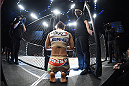 LAS VEGAS, NEVADA - DECEMBER 12: Seohee Ham enters the Octagon before facing Joanne Calderwood in their strawweight fight during The Ultimate Fighter Finale event inside the Palms Casino Resort on December 12, 2014 in Las Vegas, Nevada. (Photo by Jeff Bottari/Zuffa LLC/Zuffa LLC via Getty Images)