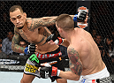 LAS VEGAS, NEVADA - DECEMBER 12: (L-R) Yancy Medeiros punches Joe Proctor in their lightweight fight during The Ultimate Fighter Finale event inside the Pearl concert theater at the Palms Casino Resort on December 12, 2014 in Las Vegas, Nevada. (Photo by Jeff Bottari/Zuffa LLC/Zuffa LLC via Getty Images)