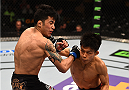 BOSTON, MA - JANUARY 18:  (R-L) Tateki Matsuda punches Joby Sanchez in their flyweight fight during the UFC Fight Night event at the TD Garden on January 18, 2015 in Boston, Massachusetts. (Photo by Jeff Bottari/Zuffa LLC/Zuffa LLC via Getty Images)