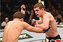 LAS VEGAS, NV - JANUARY 31:  (R-L) Joe Lauzon punches Al Iaquinta in their lightweight bout during the UFC 183 event at the MGM Grand Garden Arena on January 31, 2015 in Las Vegas, Nevada.  (Photo by Josh Hedges/Zuffa LLC/Zuffa LLC via Getty Images) *** Local Caption *** Joe Lauzon; Al Iaquinta