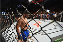 LAS VEGAS, NV - JANUARY 31:  Kelvin Gastelum prepares to face Tyron Woodley in their welterweight bout during the UFC 183 event at the MGM Grand Garden Arena on January 31, 2015 in Las Vegas, Nevada.  (Photo by Josh Hedges/Zuffa LLC/Zuffa LLC via Getty Images) *** Local Caption *** Kelvin Gastelum