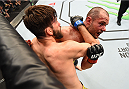 MONTREAL, QC - APRIL 25:   (R-L) Chad Laprise of Canada battles Bryan Barberena of the United States in their lightweight bout during the UFC 186 event at the Bell Centre on April 25, 2015 in Montreal, Quebec, Canada. (Photo by Josh Hedges/Zuffa LLC/Zuffa LLC via Getty Images)