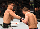 ADELAIDE, AUSTRALIA - MAY 10:   (L-R) Ben Nguyen punches Alptekin Ozkilic in their flyweight bout during the UFC Fight Night event at the Adelaide Entertainment Centre on May 10, 2015 in Adelaide, Australia. (Photo by Josh Hedges/Zuffa LLC/Zuffa LLC via Getty Images)