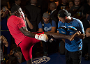 LAS VEGAS, NEVADA - MAY 20:   Anthony Johnson holds an open training session for fans and media at the MGM Grand Hotel/Casino on May 20, 2015 in Las Vegas Nevada. (Photo by Brandon Magnus/Zuffa LLC/Zuffa LLC via Getty Images)