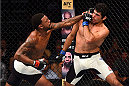 NASHVILLE, TN - AUGUST 08:  (L-R) Michael Johnson punches Beneil Dariush in their lightweight bout during the UFC Fight Night event at Bridgestone Arena on August 8, 2015 in Nashville, Tennessee.  (Photo by Josh Hedges/Zuffa LLC/Zuffa LLC via Getty Images)