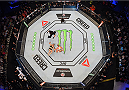 MELBOURNE, AUSTRALIA - NOVEMBER 15:  An overhead view of the Octagon as Holly Holm defeats Ronda Rousey by knockout in their UFC women's bantamweight championship bout during the UFC 193 event at Etihad Stadium on November 15, 2015 in Melbourne, Australia.  (Photo by Josh Hedges/Zuffa LLC/Zuffa LLC via Getty Images)