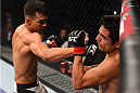 MONTERREY, MEXICO - NOVEMBER 21:  (L-R) Andre Fili of the United States punches Gabriel Benitez of Mexico in their featherweight bout during the UFC Fight Night event at Arena Monterrey on November 21, 2015 in Monterrey, Mexico.  (Photo by Jeff Bottari/Zuffa LLC/Zuffa LLC via Getty Images)