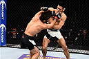 LAS VEGAS, NEVADA - DECEMBER 10:  (L) Zubaira Tukhugov and Phillipe Nover exchange punches in their featherweight bout during the UFC Fight Night event at The Chelsea at the Cosmopolitan of Las Vegas on December 10, 2015 in Las Vegas, Nevada.  (Photo by Jeff Bottari/Zuffa LLC/Zuffa LLC via Getty Images)