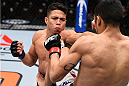 LAS VEGAS, NV - DECEMBER 11: (L-R) Geane Herrera punches Joby Sanchez in their flyweight bout during the TUF Finale event inside The Chelsea at The Cosmopolitan of Las Vegas on December 11, 2015 in Las Vegas, Nevada.  (Photo by Jeff Bottari/Zuffa LLC/Zuffa LLC via Getty Images) *** Local Caption *** Joby Sanchez; Geane Herrera