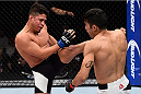 LAS VEGAS, NV - DECEMBER 11: (L-R) Geane Herrera kicks Joby Sanchez in their flyweight bout during the TUF Finale event inside The Chelsea at The Cosmopolitan of Las Vegas on December 11, 2015 in Las Vegas, Nevada.  (Photo by Jeff Bottari/Zuffa LLC/Zuffa LLC via Getty Images) *** Local Caption *** Joby Sanchez; Geane Herrera