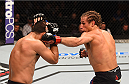 LAS VEGAS, NV - DECEMBER 12: (R-L) Urijah Faber punches Frankie Saenz in their bantamweight bout during the UFC 194 event inside MGM Grand Garden Arena on December 12, 2015 in Las Vegas, Nevada.  (Photo by Josh Hedges/Zuffa LLC/Zuffa LLC via Getty Images) *** Local Caption *** Urijah Faber; Frankie Saenz