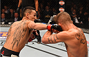 LAS VEGAS, NV - DECEMBER 12: (L-R) Max Holloway punches Jeremy Stephens in their featherweight bout during the UFC 194 event inside MGM Grand Garden Arena on December 12, 2015 in Las Vegas, Nevada.  (Photo by Josh Hedges/Zuffa LLC/Zuffa LLC via Getty Images) *** Local Caption *** Max Holloway; Jeremy Stephens