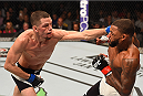 ORLANDO, FL - DECEMBER 19:   (L-R) Nate Diaz punches Michael Johnson in their lightweight bout during the UFC Fight Night event at the Amway Center on December 19, 2015 in Orlando, Florida. (Photo by Josh Hedges/Zuffa LLC/Zuffa LLC via Getty Images)